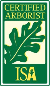 Certified Arborist Gainesville